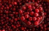 Quels sont les bienfaits des cranberries séchées?